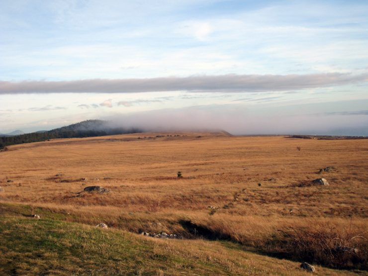 """Prairie Fog at San Juan Island National Historical Park"". Credit: National Park Service, 2010, public domain."